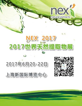 NEX China 2017