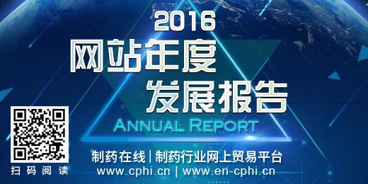 2016网站发展年报