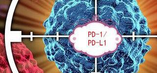 最火爆免疫疗法PD-1/PD-L1抗体:双雄对决战况