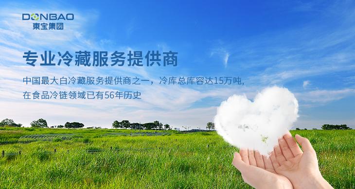 东宝实业集团有限公司