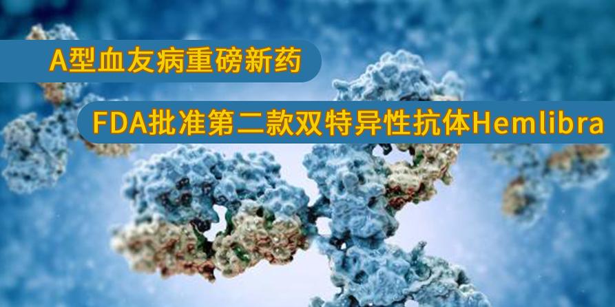A型血友病重磅新药:FDA批准第二款双特异性抗体Hemlibra