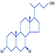 熊去氧胆酸中间体 UDCA