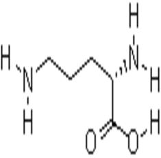 L-羟脯氨酸