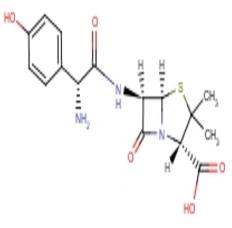 阿莫西林重粉 青霉素类