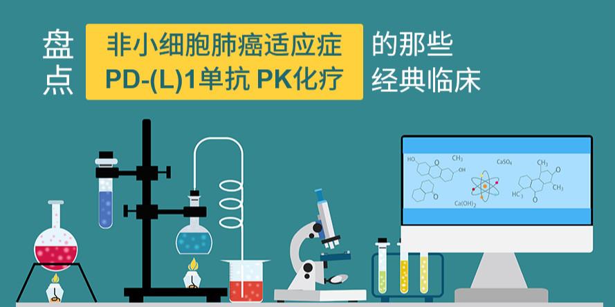 非小细胞肺癌适应症:PD-(L)1单抗PK化疗的经典临床