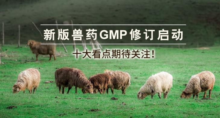 新版兽药GMP修订启动,十大看点期待关注!