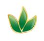 泌阳草木青生物科技有限公司