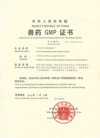 GMP证书