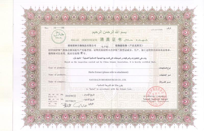 中国伊斯兰Halal