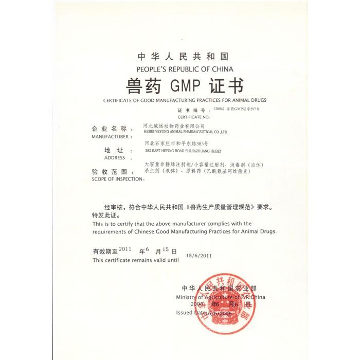 GMP 证书 2