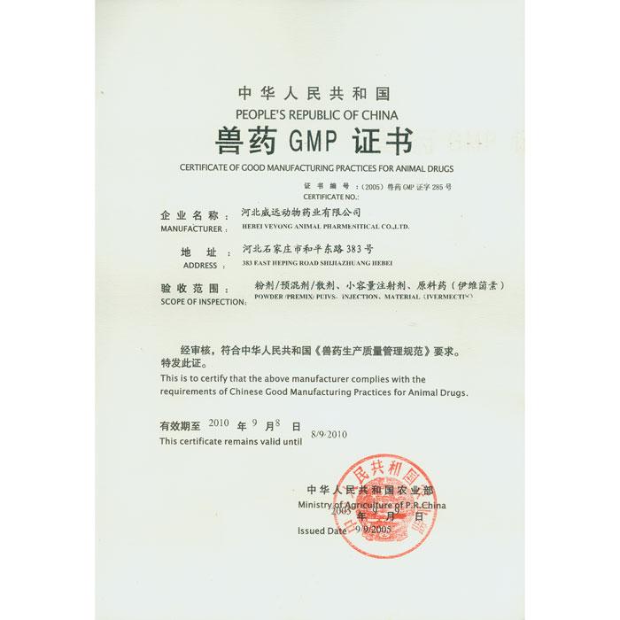 GMP 证书