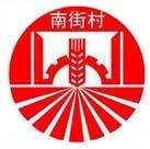 漯河南街村药业集团制药有限公司