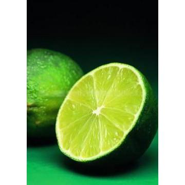 圣草次苷 柠檬提取物