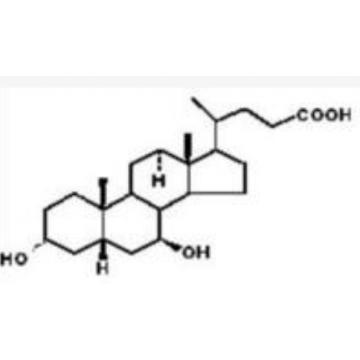 熊去氧胆酸