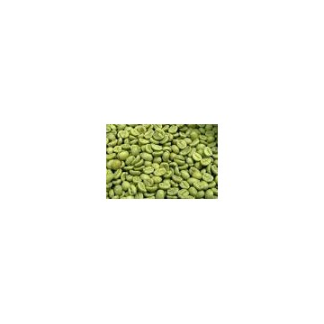 green coffee bean 50% chlorogenic acid