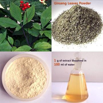 人参茎叶总皂甙 10-20%UV