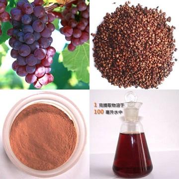 葡萄籽提取物 OPC