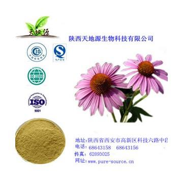 紫锥菊多酚提取物