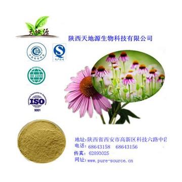 紫锥菊提取物菊苣酸1% HPLC检测  4%多酚UV检测