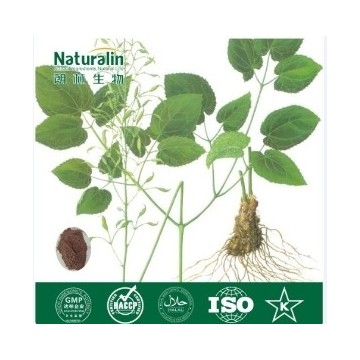 Epimedium Extract 10-98% Icariin