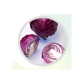 紫甘蓝色素 Red Cabbage Color