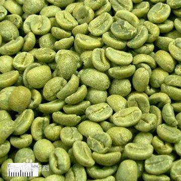 绿咖啡豆提取物