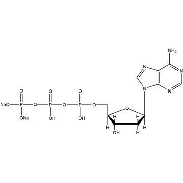 三磷酸脱氧腺苷二钠
