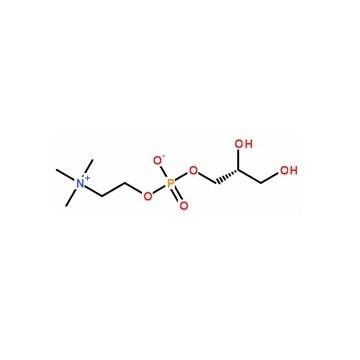 甘磷酰胆碱