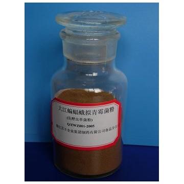 发酵虫草菌粉