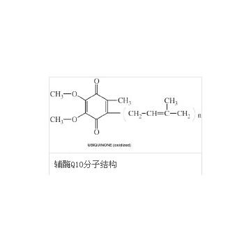 辅酶Q10  Coenzyme Q10
