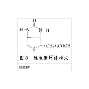 生物素           D-Biotin