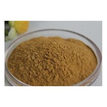 茶多酚 TP-98%