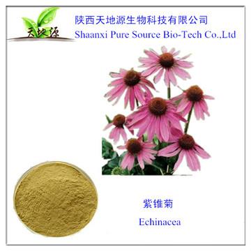种植,生产,销售一体的紫锥菊提取物
