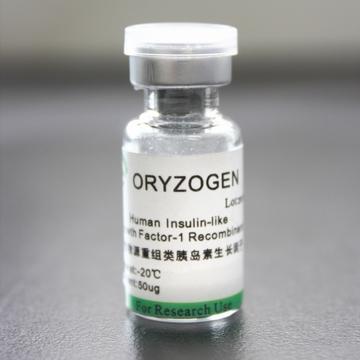 生产供应人类胰岛素生长因子-1融合蛋白IGF-1