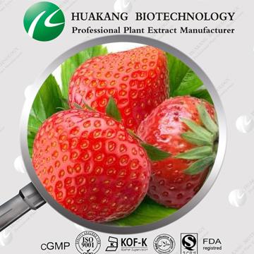 kosher&Halal 厂商批发供应草莓粉