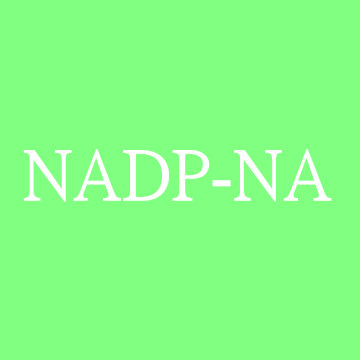 NADP单钠盐