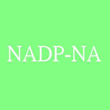 NADP钠盐