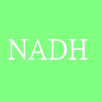 还原型辅酶  NADH