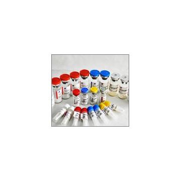 胰蛋白酶抑制剂 重组抑肽酶