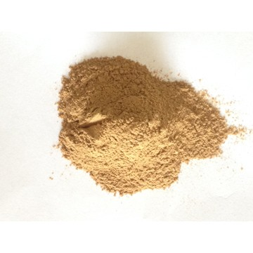 杜仲皮提取物(松脂醇二葡萄糖苷)