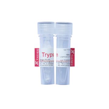 序列分析胰蛋白酶