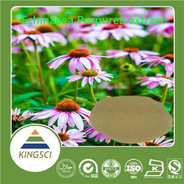 紫锥菊提取物多酚/菊苣酸