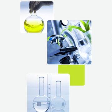 酶法工艺开发与产业化