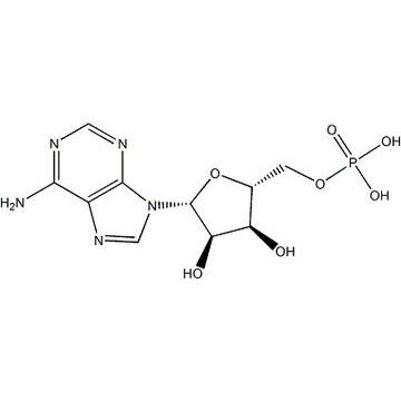5'-腺嘌呤核苷酸