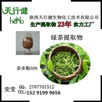绿茶提取物 茶多酚50%