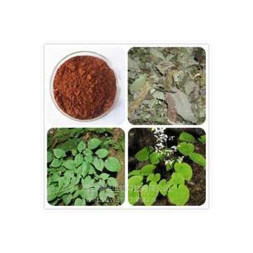 淫羊藿提取物Epimedium Extract Powder