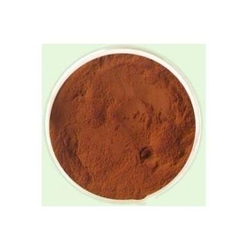 酸枣仁提取物Jujuba Extract Powder