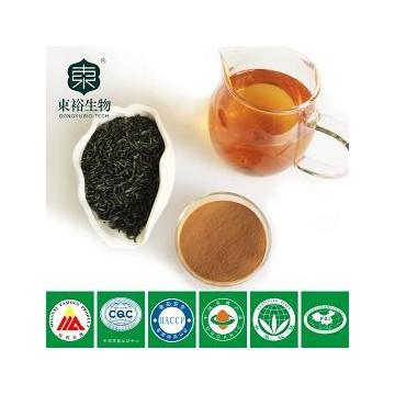 茶多酚95% EGCG45%