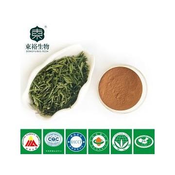 茶多酚90% EGCG45%