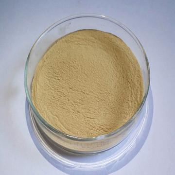 角质蛋白酶